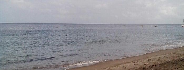 Le Petibonum is one of Martinique.