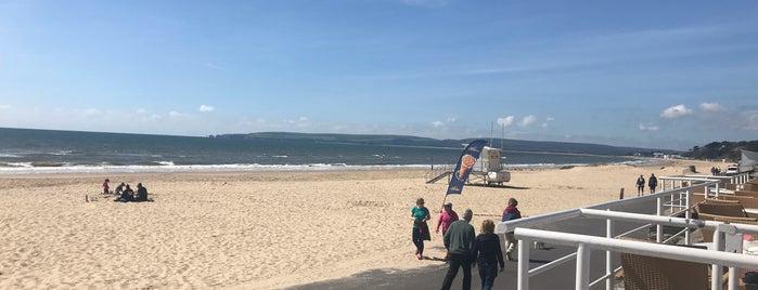 Branksome Beach Restaurant is one of Posti che sono piaciuti a Lee.