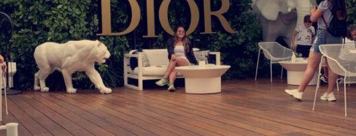 Café Dior is one of Miami🌴.