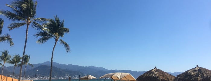 Playa Club Regina is one of Posti che sono piaciuti a Vivian.
