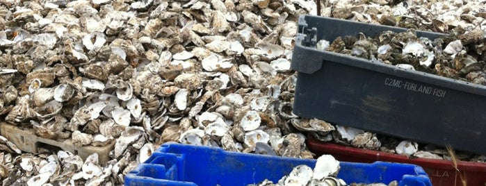 Whitstable Oyster Company is one of Lugares favoritos de Mela.