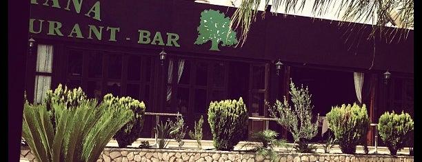 Napa Star Inn is one of Cyprus.
