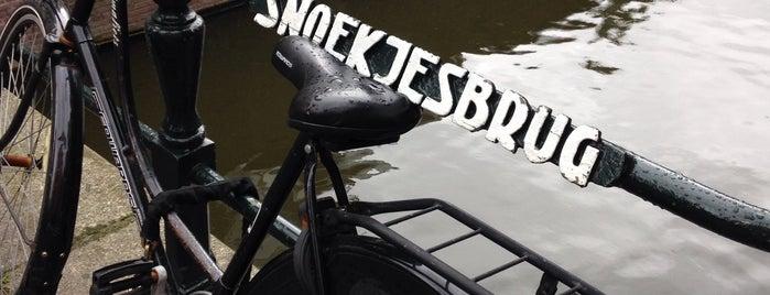 Snoekjesbrug (Brug 289) is one of Amsterdam.