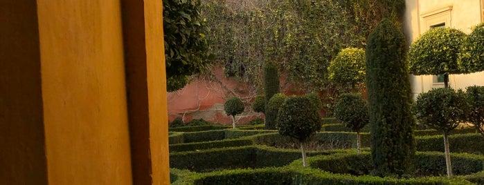 Convento San Leandro is one of Cosas que ver en Sevilla.