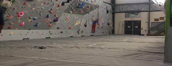 Movement Climbing Gym is one of Angel 님이 좋아한 장소.