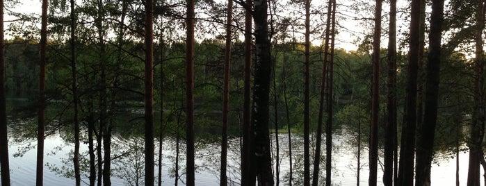 База отдыха «Голубое озеро» is one of Lugares favoritos de Евгений.