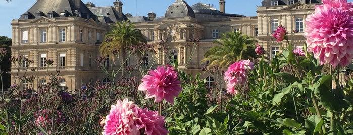 Jardin du Luxembourg is one of Tempat yang Disukai María.