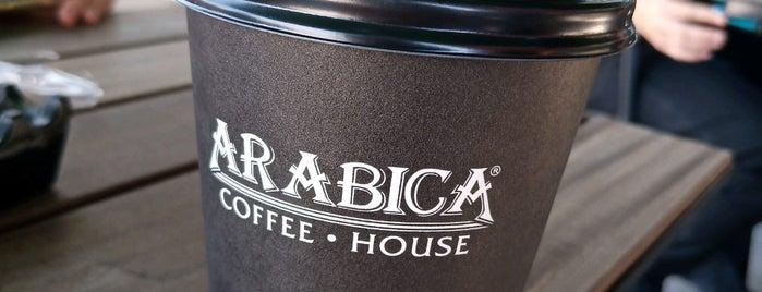 Arabica Coffe House is one of Locais curtidos por 🇹🇷sedo.