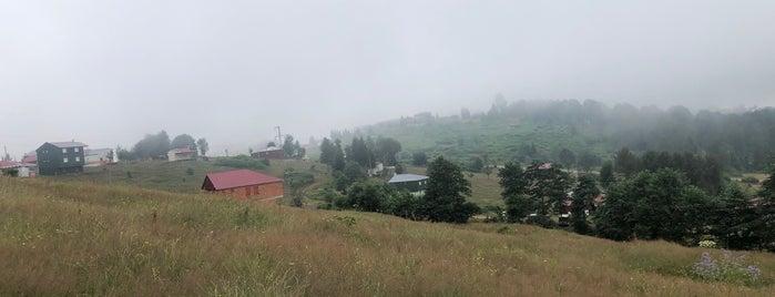 Hıdırnebi Yaylası is one of Trabzon /Gidilecek Olan.