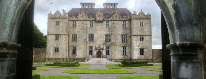 Portumna Castle is one of Lugares favoritos de David.