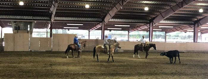 Rolling Hills Casino Equestrian Center is one of Melanie : понравившиеся места.