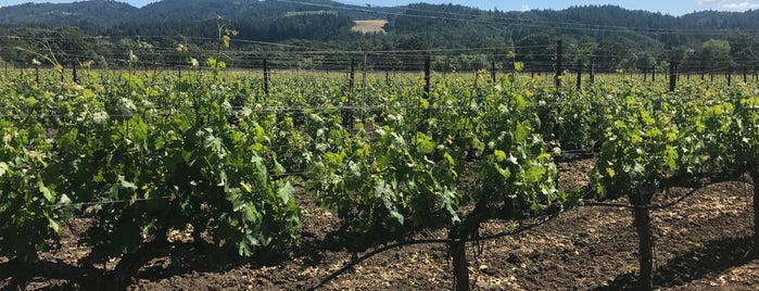 Tedeschi Family Winery is one of NAPA VALLEY.
