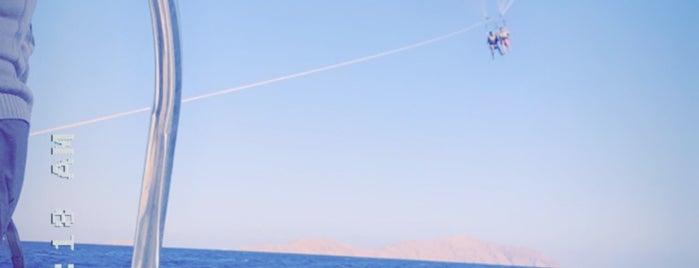 Beach at Hilton Fayrouz Resort is one of Pervin : понравившиеся места.
