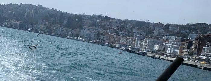 Web Teknesi is one of Istanbul.