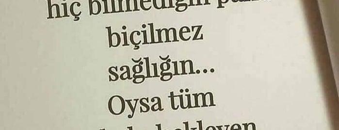 Özel Gaziemir Cerrahi Tıp Merkezi is one of Orte, die Mehmet Ali gefallen.