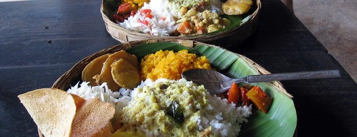 Dudhsagar Spice Plantation is one of Goa.