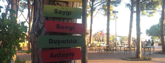 Engelsiz Cafe is one of Antalya.
