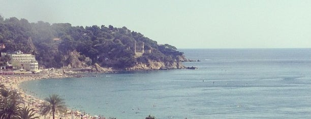 Platja de Lloret de Mar is one of Orte, die dani gefallen.