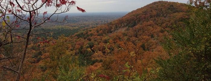 Kennesaw Mountain Trails is one of Posti che sono piaciuti a SooFab.