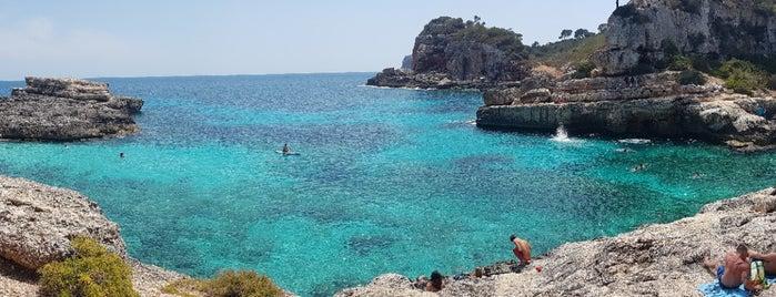 Cala s'Almunia is one of Mallorca.