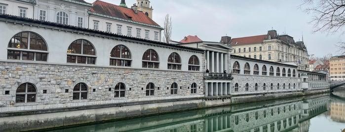 Liubliana is one of Random places.