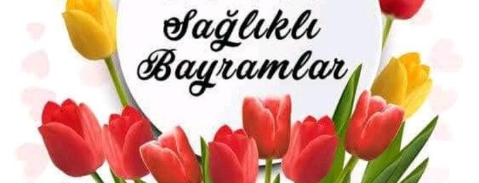 Bahçeşehir Üniversitesi is one of Halil G.さんのお気に入りスポット.
