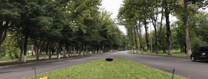 Tskaltubo Central Park is one of Lugares favoritos de Natia.