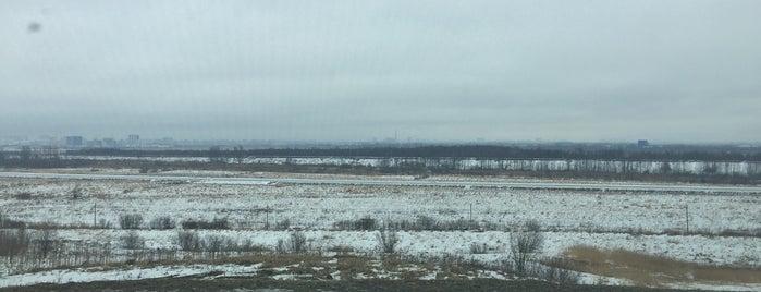Пулковское is one of Анастасия : понравившиеся места.