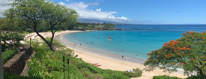 Mauna Kea Beach Hotel, Autograph Collection is one of Posti salvati di peppy.