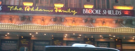 Lunt-Fontanne Theatre is one of Nederlander Broadway Theatres.