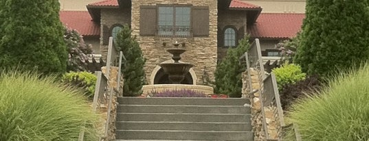 Childress Vineyards is one of Best Places to Check out in United States Pt 1.