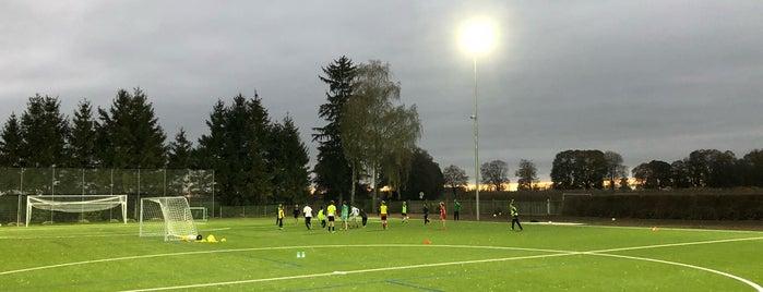 TSV Allach 09 is one of Orte, die Michael gefallen.