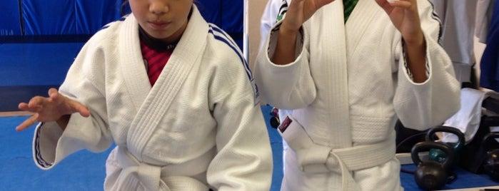 Teixeira Brazilian Jiu Jitsu is one of Unwind and Kill.