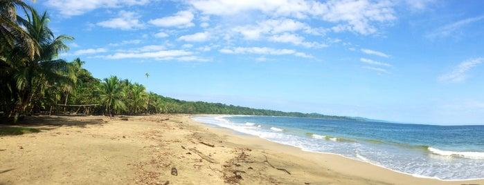 Playa Manzanillo is one of COSTA RICA.