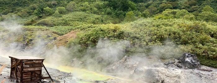 玉川温泉 is one of Lugares favoritos de 高井.