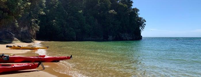 Split Apple Rock is one of Nuova Zelanda.
