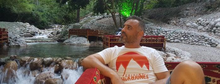 yarıkpınar meydan restorant is one of Antalya.
