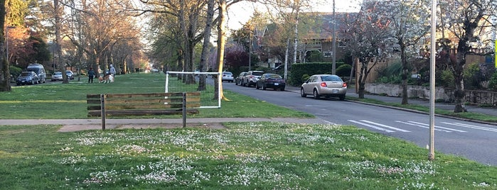 Hunter Boulevard is one of Seattle's 400+ Parks [Part 2].