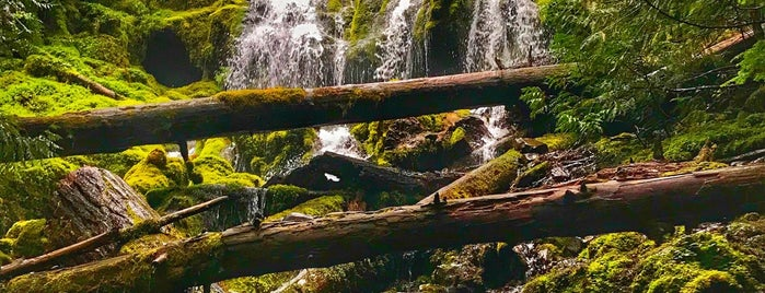 Proxy Falls is one of So much to see!.