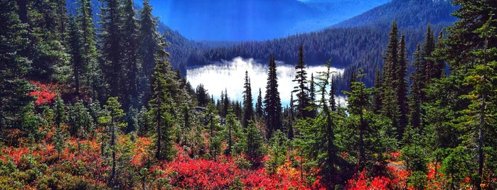 Paradise, WA is one of Bay Area - Portland - Seattle.
