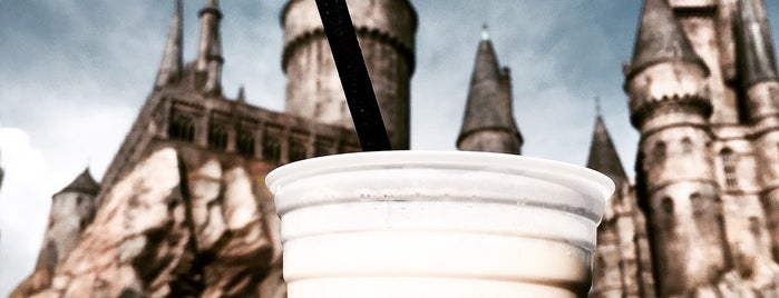 The Wizarding World of Harry Potter is one of Lieux qui ont plu à Joey.