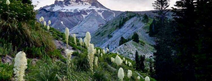 Pacific Crest Trail is one of Tempat yang Disukai Jill.