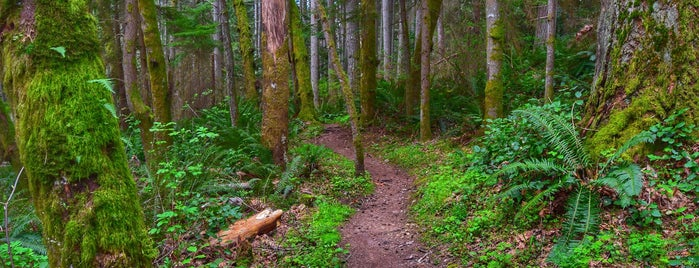 Cougar Mountain Regional Wildland Park - Anti-Aircraft Peak Trailhead is one of Seattle.