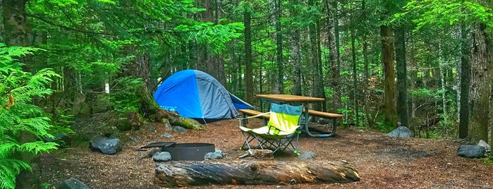 Cougar Rock Campground is one of สถานที่ที่ Krzysztof ถูกใจ.