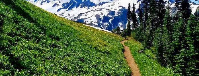 Mt Baker National Forest is one of National Recreation Areas.