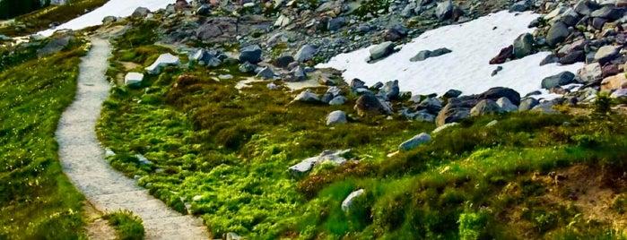 Skyline Trail is one of Lieux qui ont plu à Brent.