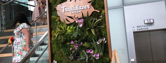 Trailblazer Tavern is one of 2019 in SF.