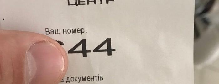 Ильяさんのお気に入りスポット