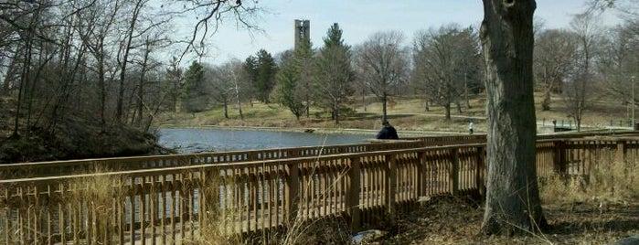 Washington Park is one of สถานที่ที่ Evan ถูกใจ.