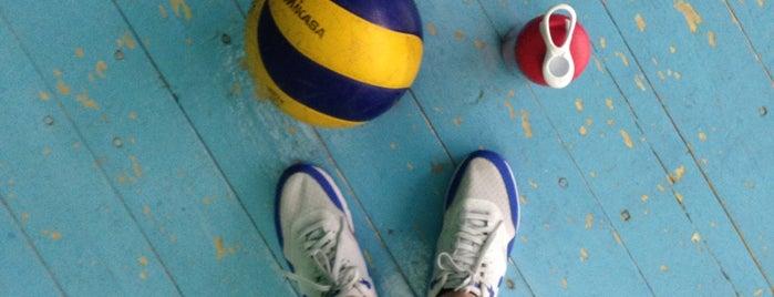 Любительская волейбольная лига is one of สถานที่ที่บันทึกไว้ของ Vyacheslav.